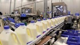 La Funpel no pierde la ilusión de tener una lechería exportadora: ?Si esto genera más empleo y valor, no hay mucho que pensar?, define Gustavo Mozeris