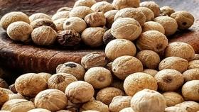 La nueva columna gastronómica de Gastón Dahir: la conquista de la pimienta