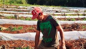 En noviembre arranca la cosecha de la sandía primicia