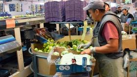 Productores e industriales acordaron precio de referencia para la pera y la manzana en Mendoza