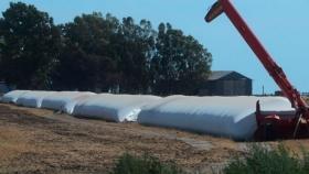 Sistemas de aireación de silo bolsas, una idea de Pigüé hacia el país