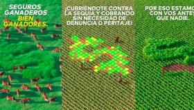Crea campaña de Sancor Seguros/Agro 2020-2021
