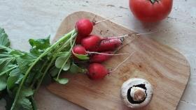 ¿Las hojas de rábano se comen? Beneficios y Forma de Uso