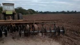 Controles a la destrucción de rastrojos del algodón en Chaco