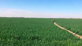 Córdoba medirá su huella agropecuaria y busca lanzar una calculadora ambiental