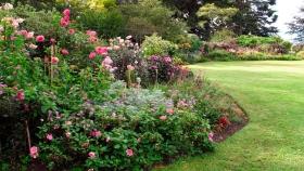Canteros: cuándo plantar y cómo diseñarlos