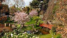 Carreras y tecnicaturas universitarias vinculadas a la jardinería y el paisajismo