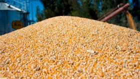 Para CRA, el Gobierno entendió que cometió un error grosero con el cepo al maíz
