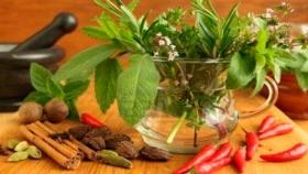 ¿Cuál es la diferencia entre hierba aromática y especia?