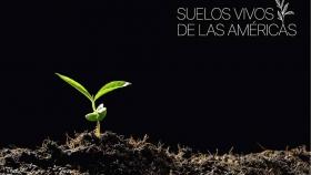 Bayer Crop Science: primer socio estratégico de la iniciativa Suelos Vivos de las Américas