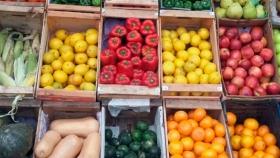 Con apoyo del Gobierno, el Mercado Central busca red nacional de precios económicos
