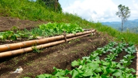 Realizarán el VIII Congreso Latinoamericano de Agroecología en Uruguay