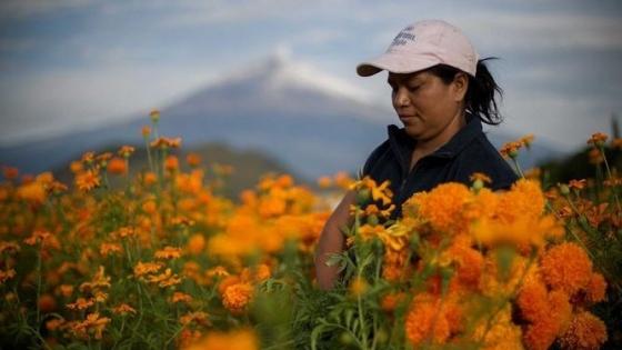 Mujeres rurales argentinas y empoderadas