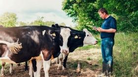 El bienestar animal bajo escrutinio en el comercio internacional de carnes