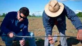 Pequeños productores e innovación: el desafío de la extensión rural