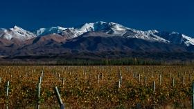 Wines of Argentina profundiza el posicionamiento mundial del Vino Argentino