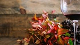 Argentina asume la presidencia del Grupo Mundial de Comercio del Vino
