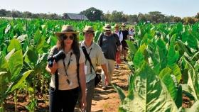 Agroturismo y desarrollo rural: ruta del tabaco