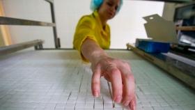 Rusia se convierte en uno de los mayores exportadores de azúcar del mundo