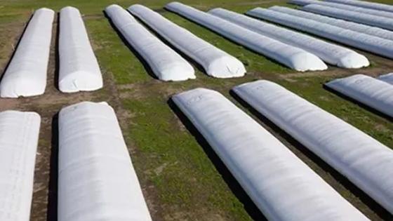 Recomendaciones para lograr un correcto almacenamiento de granos
