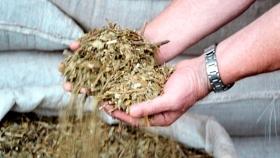 Aumentó 12 millones de kilos el consumo de yerba mate entre enero y noviembre de 2019