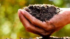 La nutrición eficiente de cultivos ayuda a producir con limitaciones de agua
