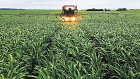 La producción agropecuaria sustentable como revolución del campo