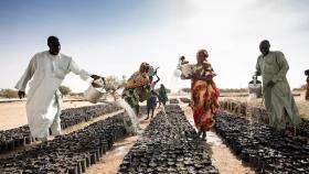 Invertir en agricultura es la mejor esperanza de África para recuperarse del Covid-19