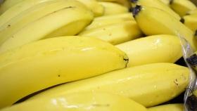 Hubo récord por envío de banana