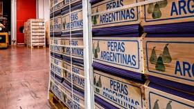Por carpocapsa, Brasil rechazó un camión de fruta del Valle