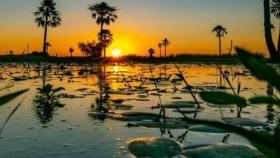El Parque Iberá, el santuario natural de Corrientes