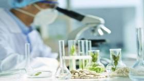 Se cumplen 25 años de la introducción de la biotecnología en la Argentina