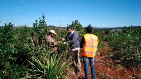 El RENATRE se reunió junto al Gobierno de La Rioja para la planificación de la cosecha 20/21 e impulsar el Pase Sanitario Rural