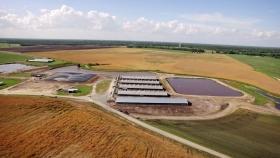 La granja de cerdos más grande del mundo ya genera energía renovable para miles de hogares