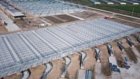 Si no hay imprevistos, el Mercado Agroganadero de Cañuelas comenzaría en agosto con los primeros remates