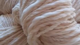Río Negro: insisten por retenciones cero a jugos y lana