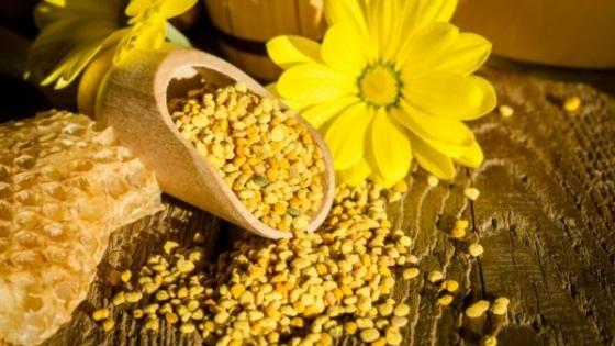 Qué es el polen y para qué sirve