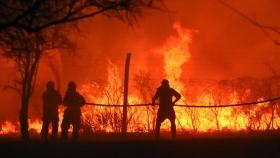 """""""Destrucción total"""": por que los incendios arrasan América del Sur"""