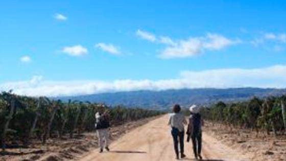 Turismo rural y comunitario, un hecho social transformador