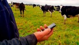 Conectividad rural, fundamental para las comunidades rurales y la bioeconomía