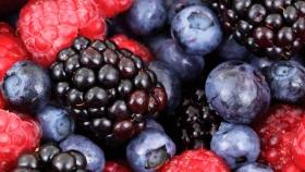 Creció la demanda de productos elaborados con frutos del monte