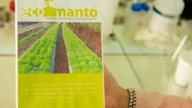 Crean un herbicida a través de la cáscara de cítricos que se aplica en forma de manto