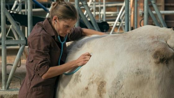 La película que le hace honor a los veterinarios rurales
