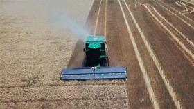 """Maquinaria agrícola: lanzan un """"stripper"""" para la cosecha de trigo"""
