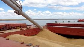 Volumen récord para la comercialización de trigo 2021/22
