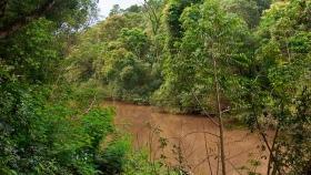Se realizó la primera reunión de la Comisión de Bosques Nativos del año