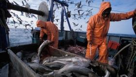 Se conformó la Unidad de Coordinación de Certificación de Capturas y Exportaciones pesqueras