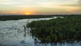 San Isidro suma una isla y sueña con un Delta