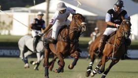 La Argentina es el cuarto productor mundial de caballos de élite
