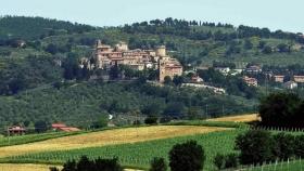 Aceite de oliva: la región italiana que resalta por su producción artesanal y turística